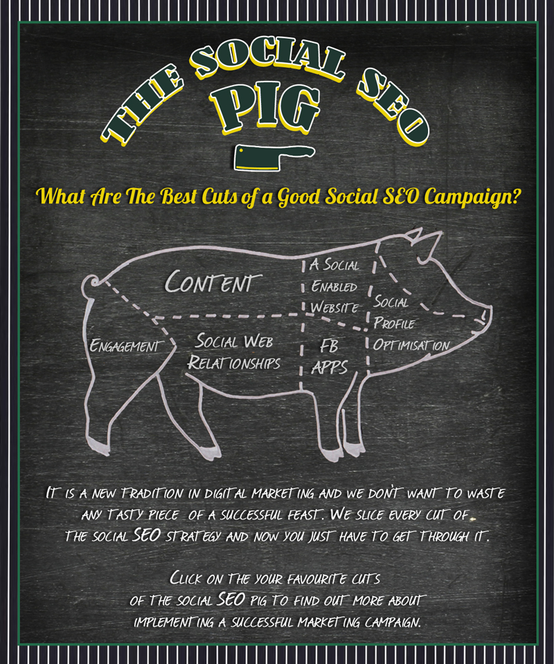 good social seo campaign infographic