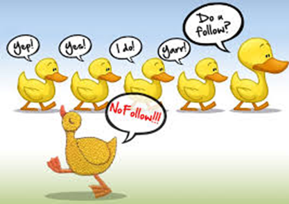 Nofollow Duck picture