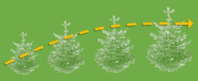 Christmas Analytics