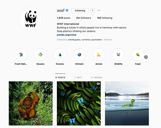 wwf_instagram_screenshot